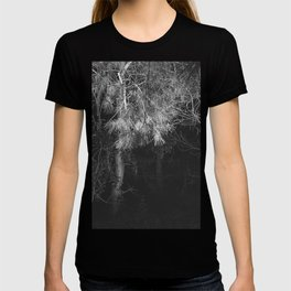 Night Pine Wood T-shirt
