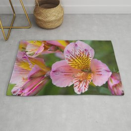Pink and yellow flora Rug