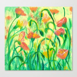 Sun drenched Poppies Canvas Print