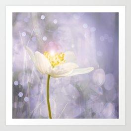 White Flower In The Forest Enchantments - Bokeh Background #decor #buyart #society6 Art Print