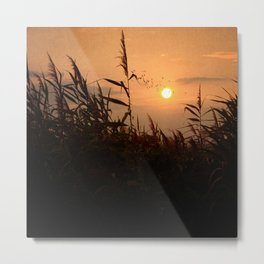 Last Flight of the Day Metal Print
