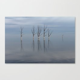Minimalism with trees. Canvas Print