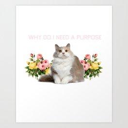 Why? Art Print