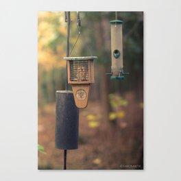 feeder Canvas Print