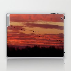 Flight of cranes in the south Laptop & iPad Skin