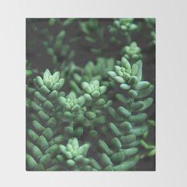 Succulent plants Throw Blanket
