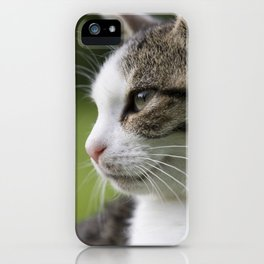Katzen Portrait iPhone Case