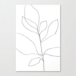 Seven Leaf Plant - Minimalist Botanical Line Drawing Canvas Print