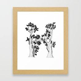 "Native Texas Plants ""H"" Framed Art Print"