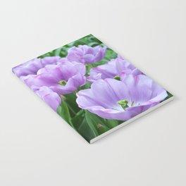 Mauve tulips Notebook