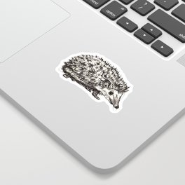 Woodland Creatures: Hedgehog Sticker