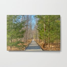 Jesup Boardwalk Trail Metal Print