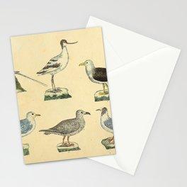 046 phaeton aethereus Avocet Great Black backed Gull Great Black Backed Gull larus naevius Laughing Gull10 Stationery Cards