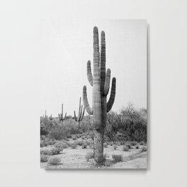 Arizona's Cactus - B&W Metal Print