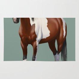 Beautiful Bay Pinto Quarter Horse Rug