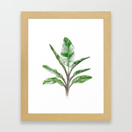 Green Watercolour House Plant Framed Art Print