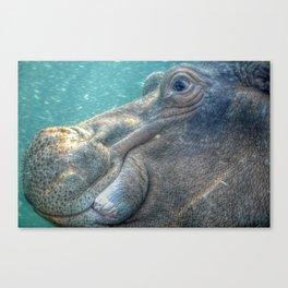 Hippopotamus Smiling Underwater Canvas Print