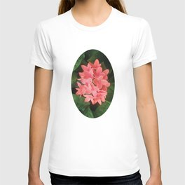 Red Rubiaceae Flower T-shirt