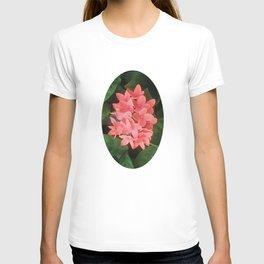 Red Rubiaceae Flower T-shirt