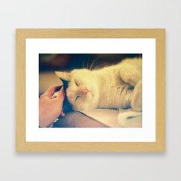 keep scratching Framed Art Print