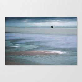 Walk on the beach in winter Canvas Print
