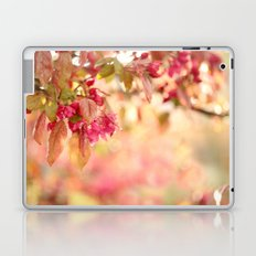 After The Rain Has Gone Laptop & iPad Skin