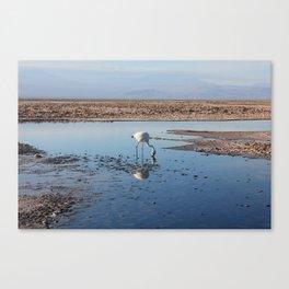 Salar de Atacama Canvas Print