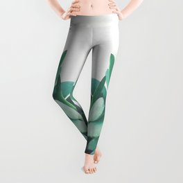 Crassula Leggings
