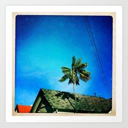 palm tree and sky Art Print