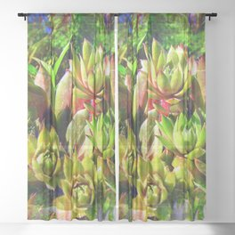 """""""Hens and Chicks"""" Made Seamless Sheer Curtain"""