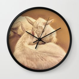 puppy goat in the farm Wall Clock