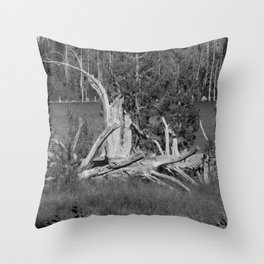 road trip, wood pile, snag by the lake Throw Pillow