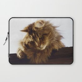 Curious Maine Coon Cat Laptop Sleeve