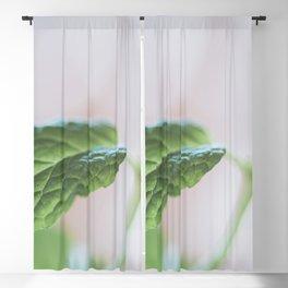 Mint Kitchen No 2 Blackout Curtain
