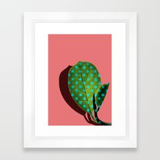 Tropical Leaf #03 Framed Art Print