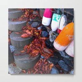 Autumn on the Coast of Maine (2) Metal Print