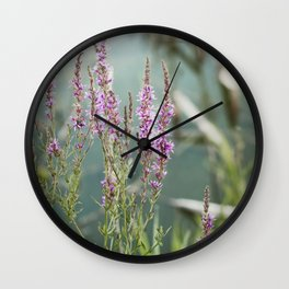 Lakeside Colors Wall Clock
