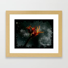 Captured Framed Art Print