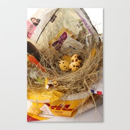 urban.nests.101 Canvas Print