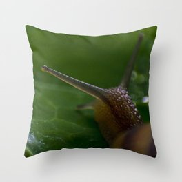 Snailing Along Throw Pillow