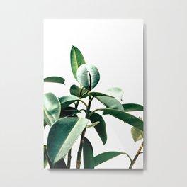 Green rapsody Metal Print