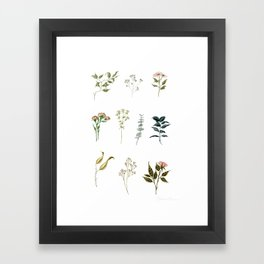 Delicate Floral Pieces Framed Art Print