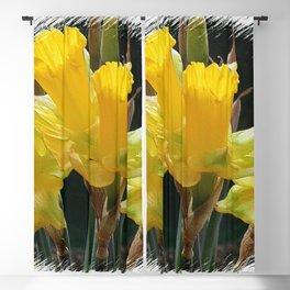 Daffodils 2 Blackout Curtain