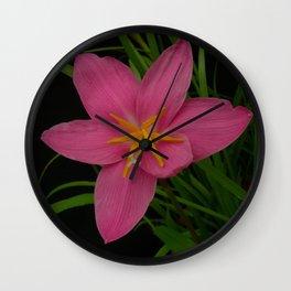 Pretty Pink Rain Lilies Wall Clock
