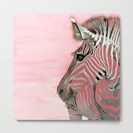 Zebra Pink and White Metal Print