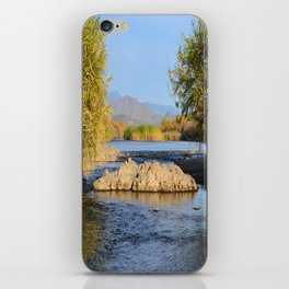 Salt River Arizona iPhone Skin