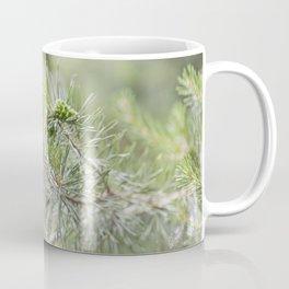 Pine Cone 3 Coffee Mug