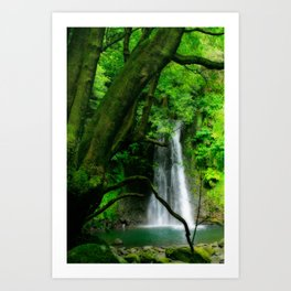 Waterfall in Azores islands Art Print