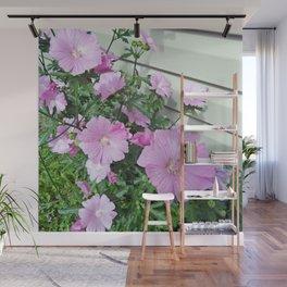 Pink Musk Mallow Bush in Bloom Wall Mural