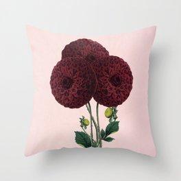 Dark red burnet flower on pink Throw Pillow